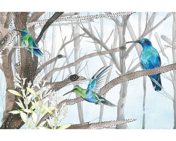 Colibri фото