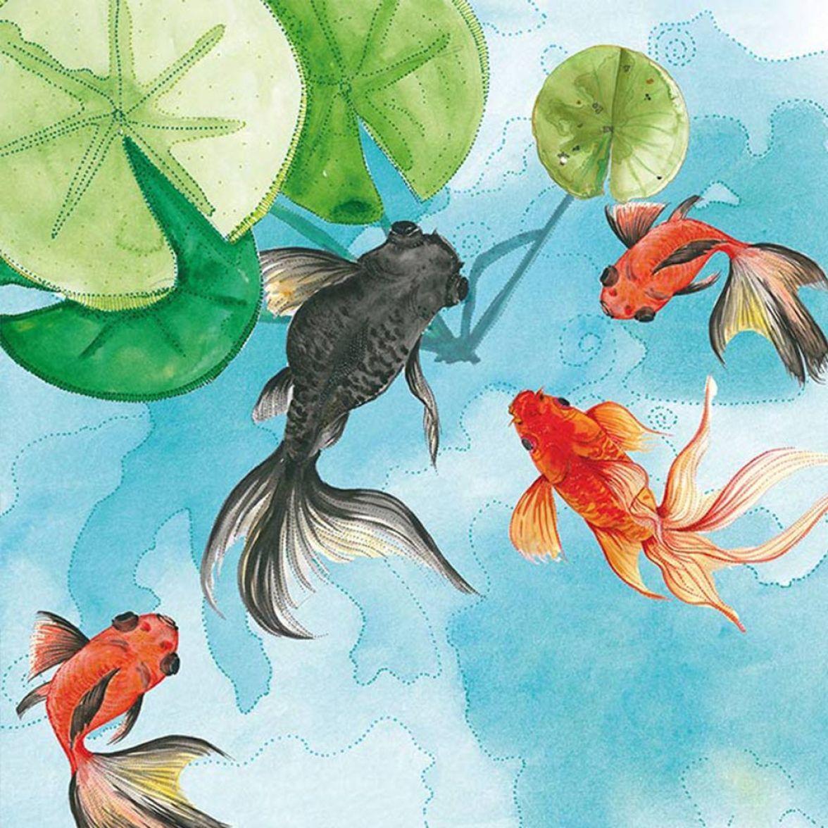 Goldfish фото цена